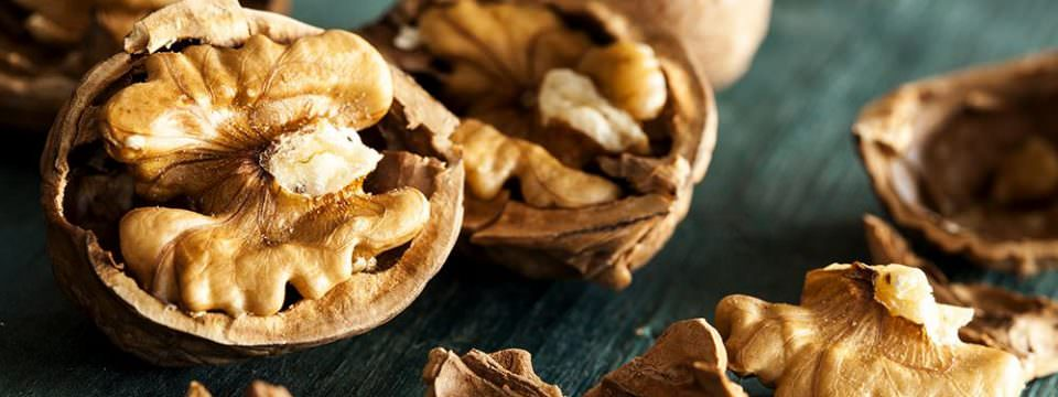walnuts-are-good-for-Senior-Nutrition