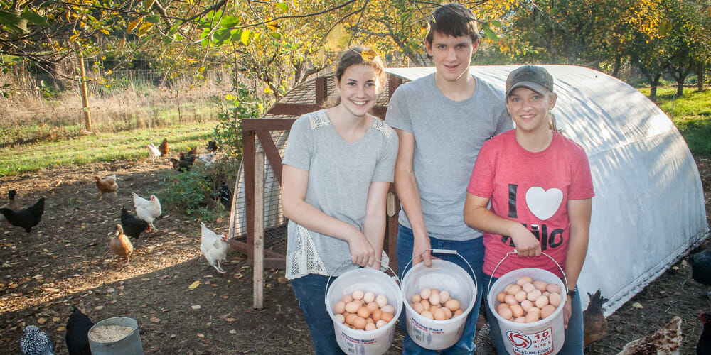 Us Adventist Academy Adds Free Range Eggs To Agriculture